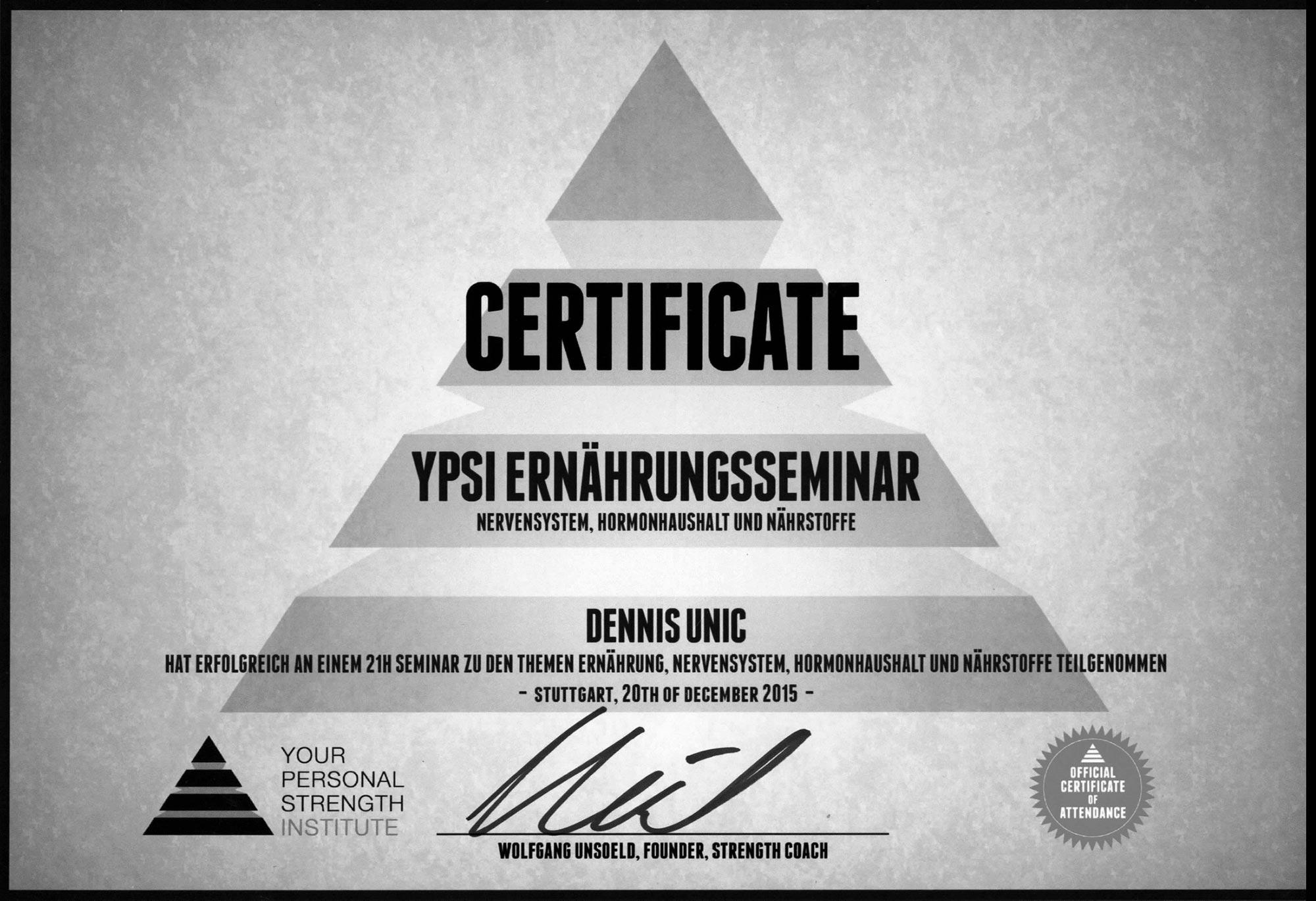 YPSI_Programm_Design_LizenzSW